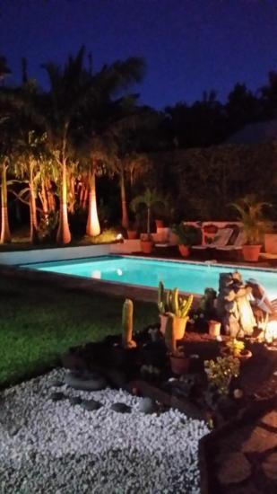 Le jardin la nuit s'illumine