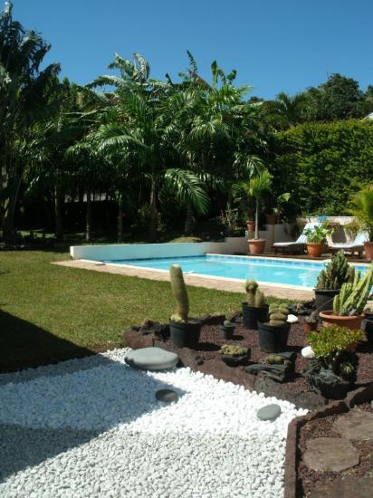 piscine et jardin de la location