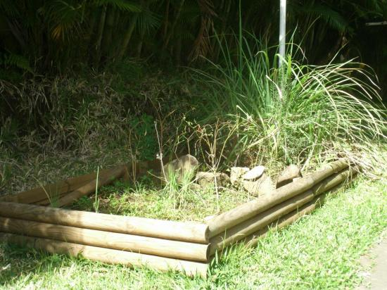 coin plantes aromatiques de la villa