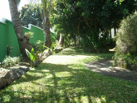 jardin du meublé, verdoyant et amènagé