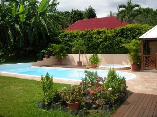 jardin et piscine de la location vacances