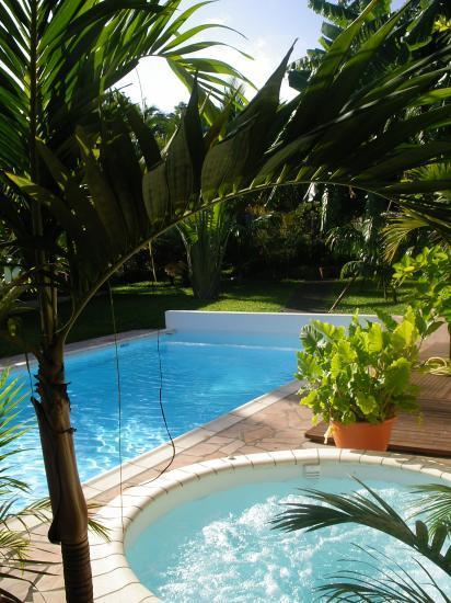 jacuzzi,piscine et jardin du meublé de tourisme
