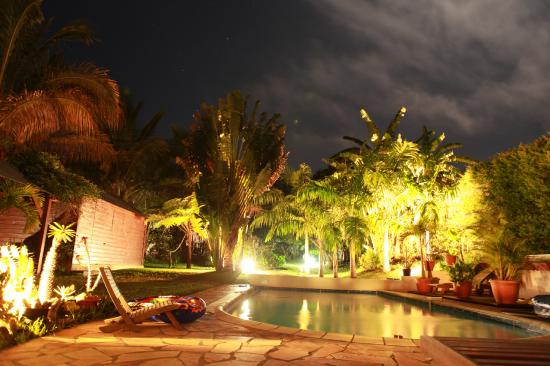 piscine et jardin du meublé de nuit