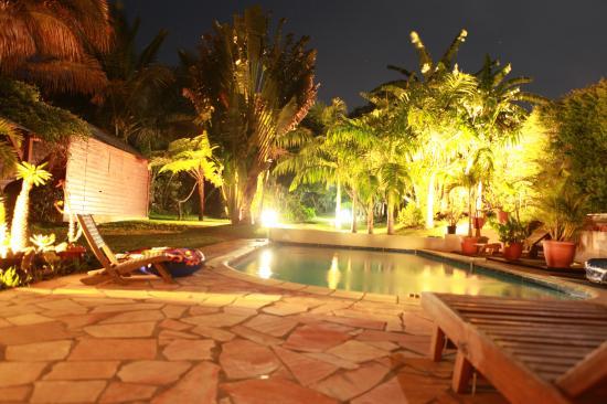 jardin de nuit du meublé