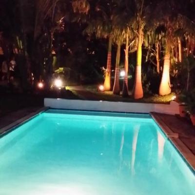 Vue piscine et fond du jardin
