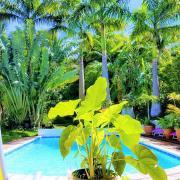 votre vue côté petite varangue sur le jardin de la location de vacances