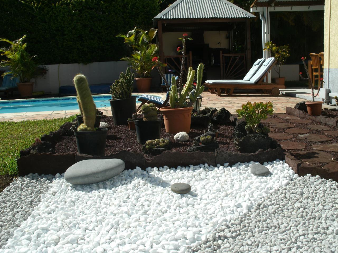 galets, cactus et barbecue en arrière
