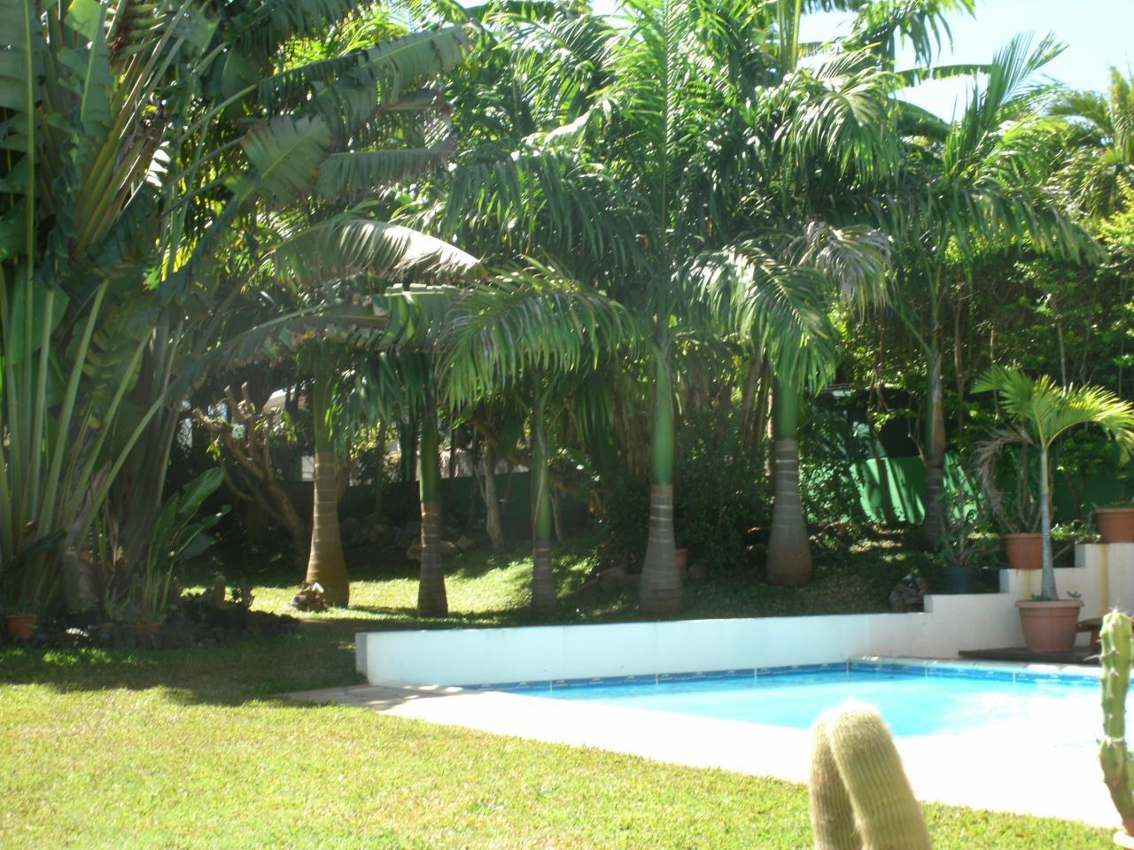 piscine et jardin de l'hébergement