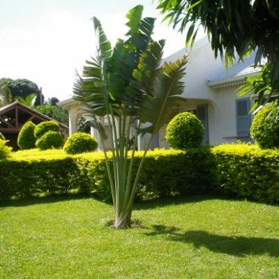 photos extérieur villa