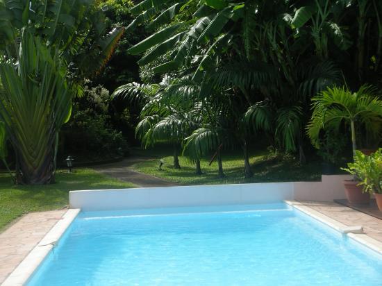 piscine et jardin du meublé de tourisme
