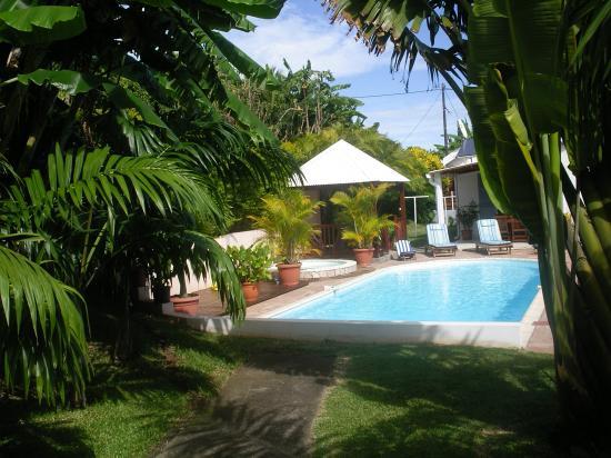 vue de la piscine du fond du jardin du meublé