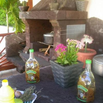 cuisine d'été au feu de bois et barbecue de l'hébergement